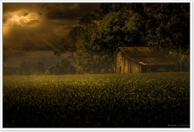 Imagen 317 650x443 - Los límites de los concursos fotográficos.